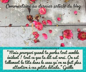 commentaire-blog